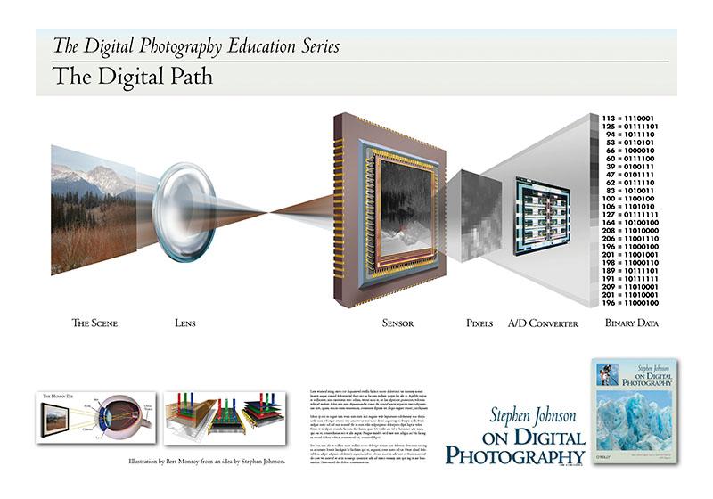 digital path poster