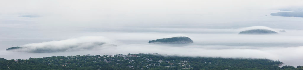 acadia fog
