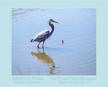 Heron Poster Image